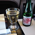 東北新幹線「はやぶさ」グランクラス