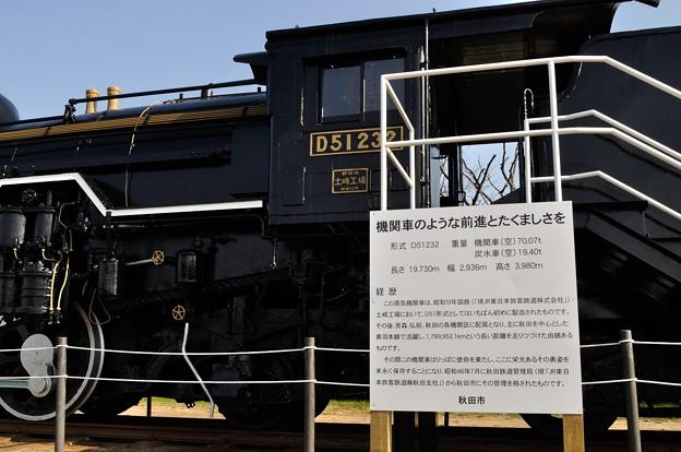 大森山公園のD51 3