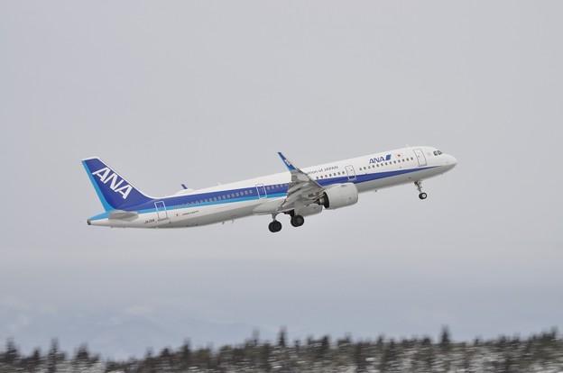 秋田空港 流し撮り練習 ANA 17-01-28 15-58
