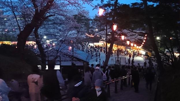 2018 秋田千秋公園 夜桜 11