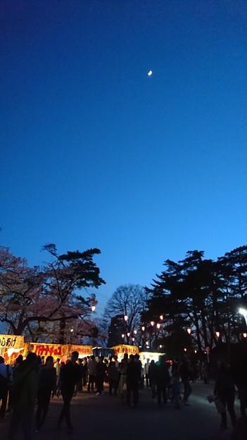 2018 秋田千秋公園 夜桜 15