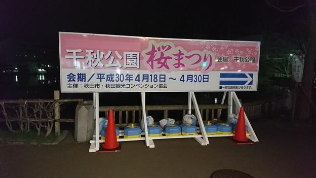 2018 秋田千秋公園 夜桜 21