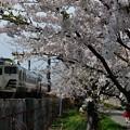 Photos: 男鹿線キハ40系 1132D 18-04-22 13-09
