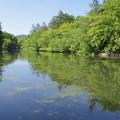 Photos: 雲場池~♪