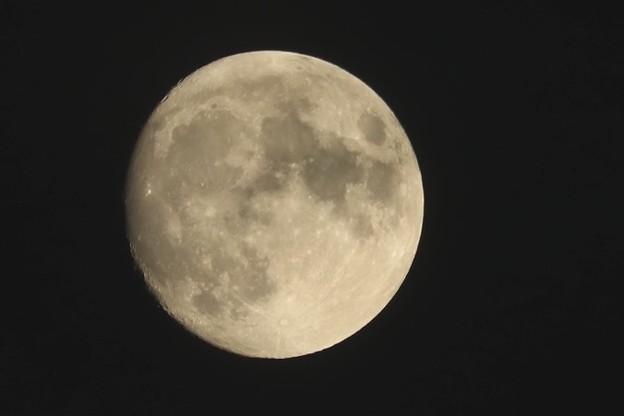 小望月~♪