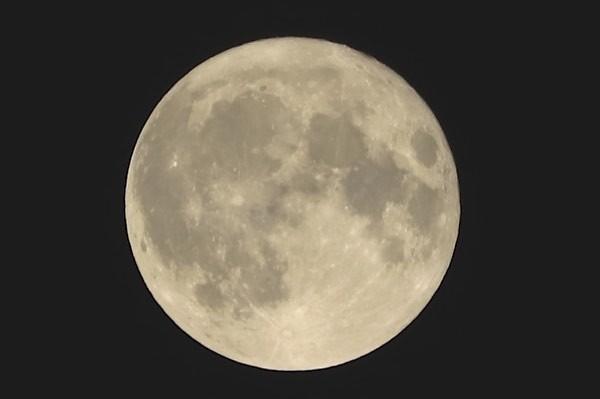 まんまるお月さま~♪