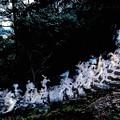 南紀熊野新宮御燈祭-3