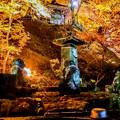 Photos: 里の秋-2
