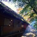 写真: 里の秋-4