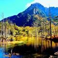 写真: 上高地の秋