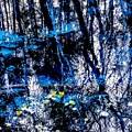 写真: 青池(北海道)の秋