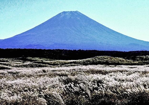 写真: 富士原野の秋