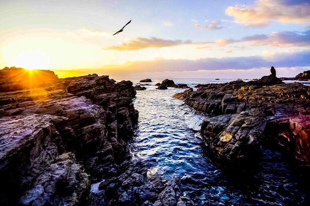 朝日受ける波間