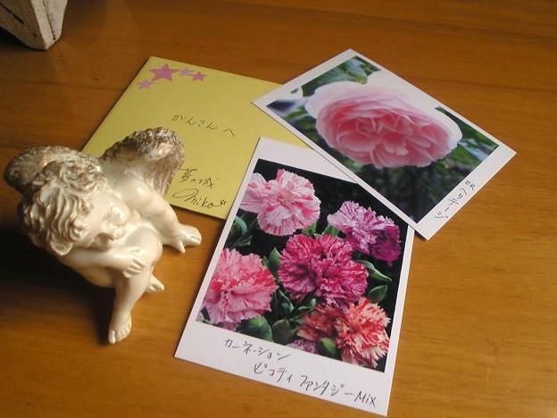 Photos: 1,30手紙
