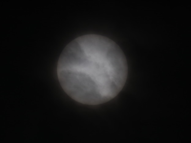 Photos: 今日の太陽 11/19