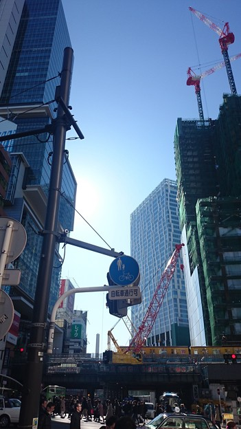 こんな渋谷にな~たねと~
