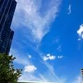 写真: タワマンと空