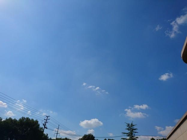 写真: ぃい天気