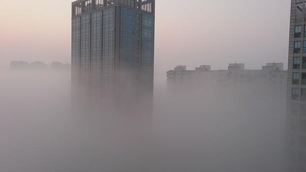 レベル3の濃霧