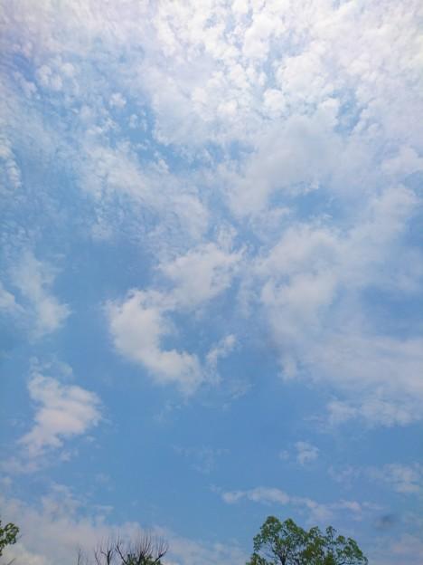 29度秋の空