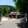 写真: 信夫山-33