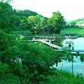 Photos: 水上の神社