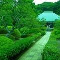 Photos: 浄妙寺