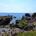 Photos: 海の爪痕