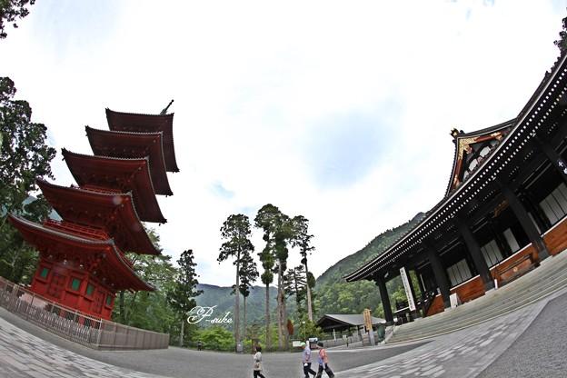 Photos: 身延山久遠寺