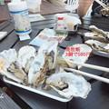 写真: 牡蛎