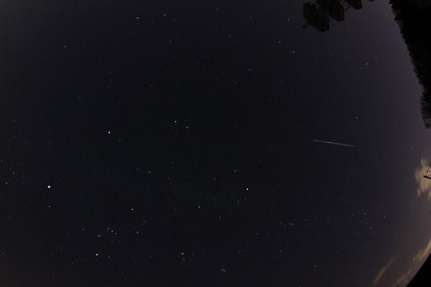 ふたご座流星群 天頂付近ちょっと北より