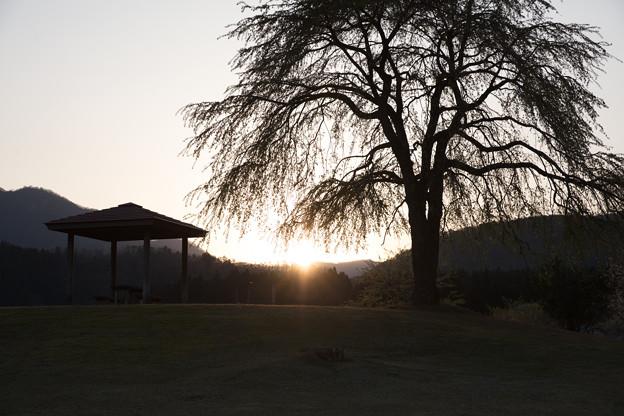 Photos: 夕陽とともに・・・
