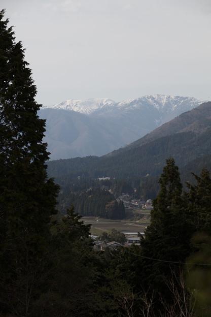 新緑と冬景色