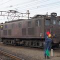 Photos: 大井川鐵道 ED501