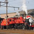 Photos: 大井川鐵道 C56 44
