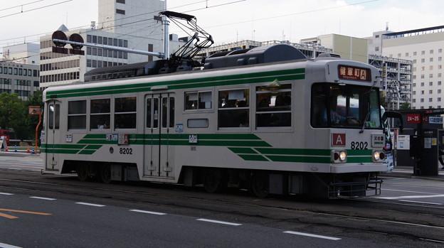 熊本市電 8202