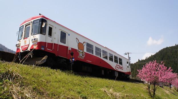樽見鉄道 ハイモ295-617
