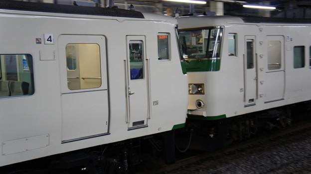 185系 B7+OM03