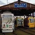 Photos: 鹿児島市電 9503と7503と9509