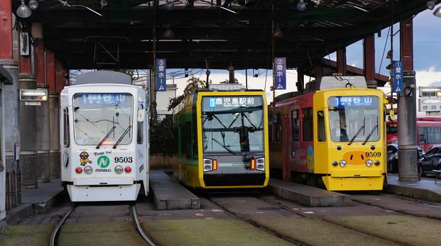 鹿児島市電 9503と7503と9509