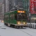 Photos: 札幌市営 8500形 8501