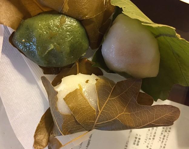 仙太郎の柏餅