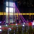 写真: ミッドランドスクエア周辺のクリスマス・イルミネーション 2015 No - 12
