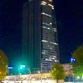 写真: 名駅西口から見上げた、夜のルーセントタワー - 1