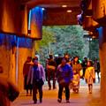Photos: 東山動植物園 星が丘門から植物園へと通じる通路 - 2