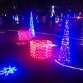 Photos: フラリエのクリスマスイルミネーション 2015「La Luce Blu」No - 11