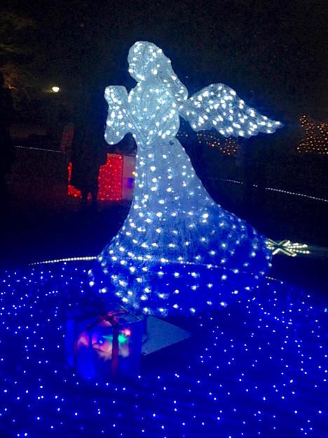 フラリエのクリスマスイルミネーション 2015「La Luce Blu」No - 13