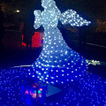 Photos: フラリエのクリスマスイルミネーション 2015「La Luce Blu」No - 13