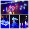 フラリエのクリスマスイルミネーション 2015「La Luce Blu」No - 41