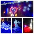 フラリエのクリスマスイルミネーション 2015「La Luce Blu」No - 45